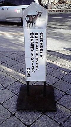 2008122815070000.jpg
